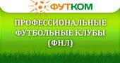Профессиональные футбольные клубы (Первый дивизион)