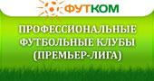 Профессиональные футбольные клубы (Премьер-Лига)